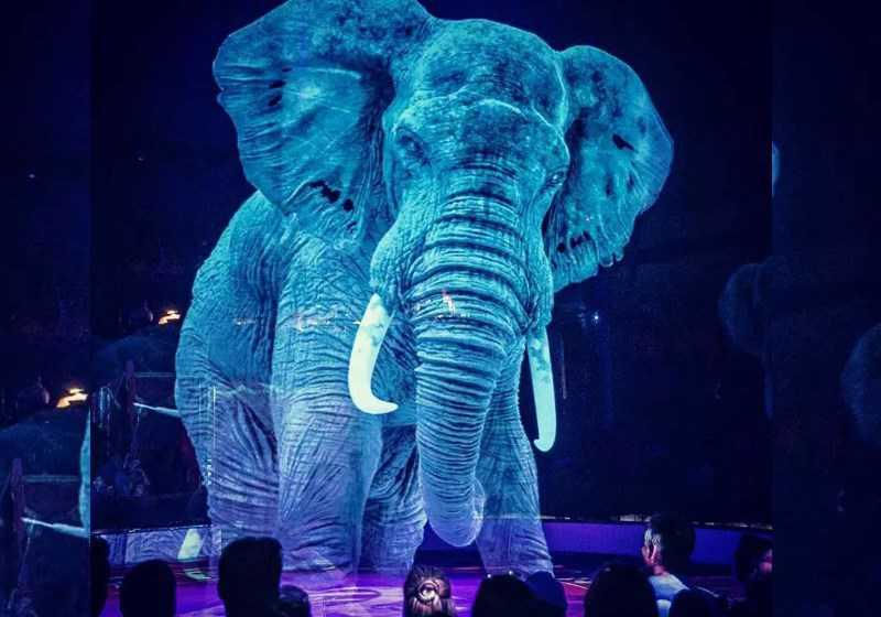 Animais por Hologramas | Espetáculo fascinante sem Sofrimento em Circo